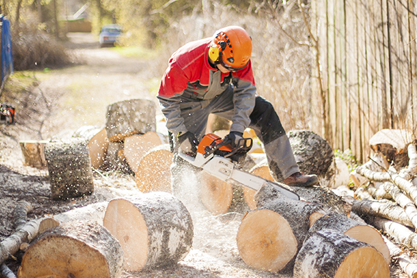 Распил и колка дров